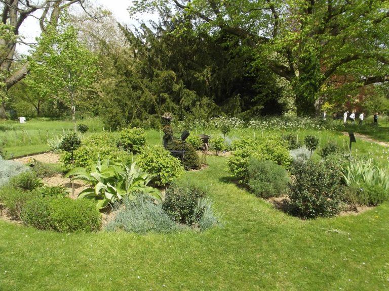 Un jardín con plantas aromáticas es fácil de diseñar