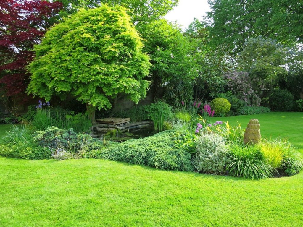 Un jardín verde no tiene por qué ser aburrido