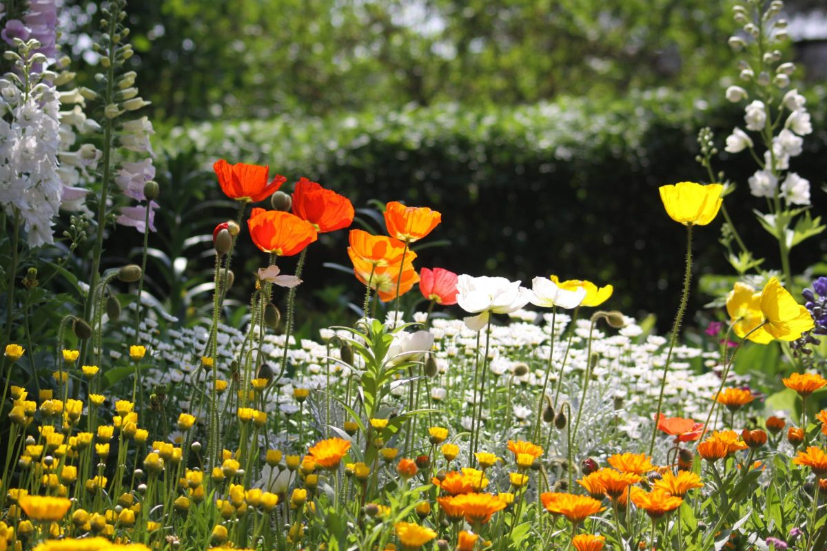 Los jardines interiores han de tener una zona de relax